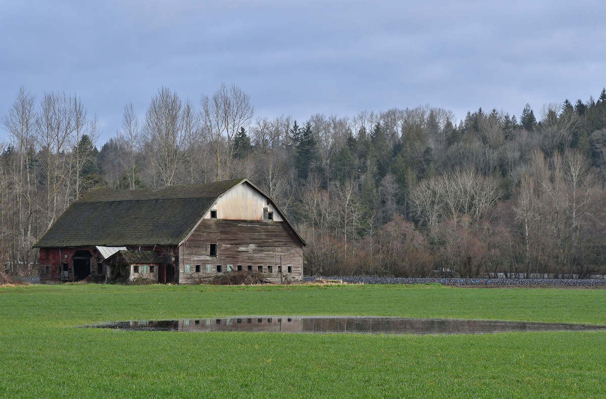 a barn in a green field with a pond in front
